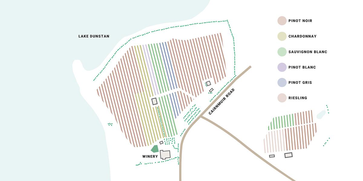 Carrick varieties map